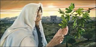 Jesús y la higuera chunga