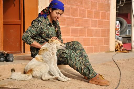 combatiente-kurda-perro-qahtaniya